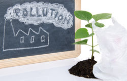 Pollution concept with a green small plant and a plastic bag Stock Photography