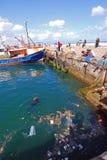 Pollution dans les mers Images stock