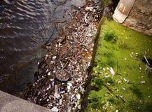 Pollution de fleuve Images libres de droits
