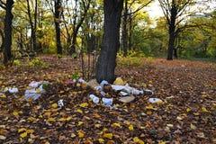 Pollution de forêt avec des déchets de plastique, de polyéthylène et en métal photo stock