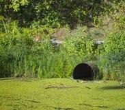 Pollution de rivière ou de lac Photographie stock