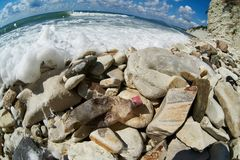 Pollution of environment on stony beach Royalty Free Stock Image