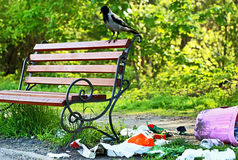 Pollution. Environmental problem. Garbage (rubbish) near bench. Royalty Free Stock Image