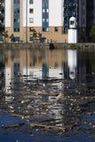 Pollution et phare de bord de mer Image libre de droits