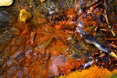 Pollution - flaque d'huile - catastrophe écologique Photographie stock