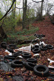 Pollution and fly tipping in our woodlands Royalty Free Stock Photo