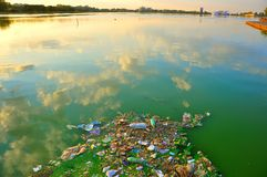 Pollution In The Sea Water , Romania Royalty Free Stock Photo