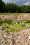 Pollution on meadow Stock Photo