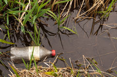 Pollution: Plastic Bottle Littering Water. Discarded, empty plastic beverage bottle lying in water among grass at edge of body of fresh water. Copy space Royalty Free Stock Photos