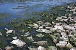 Pollution river stock photos