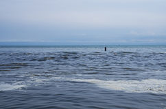Pollution on sea Royalty Free Stock Photo