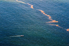 Pollution in the sea at Gordons Bay. CAPE TOWN, SOUTH AFRICA - DECEMBER 20TH, 2014: A boat with unidentified people approaches pollution in the sea at Gordons Stock Images