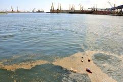 Pollution sur la côte de la Mer Noire en Roumanie Image libre de droits