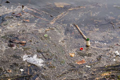 Pollution water trash Stock Photography