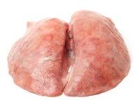 Polmone del maiale isolato fotografie stock libere da diritti
