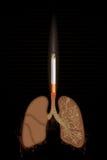 Polmoni burning della sigaretta illustrazione di stock
