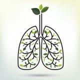 Polmoni con la foglia verde Illustrazione nera di vettore del profilo Illustrazione di Stock