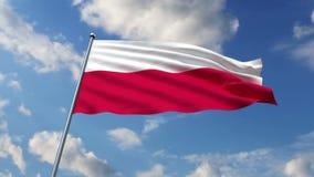 Polnische Flagge stock abbildung