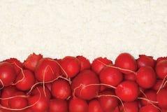 Polnische Flagge gemacht vom Lebensmittel Lizenzfreie Stockbilder