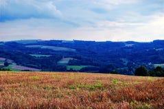 Polnische Landschaft Stockbild