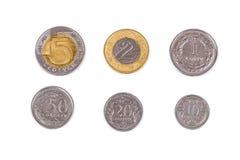 Polnische Münzen Stockbild