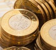 Polnische Münzen schließen oben Stockfotografie