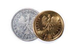 Polnische Münzen von verschiedenen Bezeichnungen lokalisiert auf einem weißen Hintergrund Viele polnische Centmünzen Makrofotos v Stockfotografie