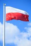 Polnische Markierungsfahne Stockfotografie