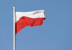 Polnische Markierungsfahne stockfotos