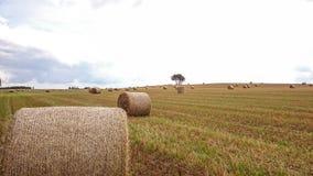 Polnisches Dorf während des Sommers Lizenzfreies Stockfoto