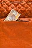 Polnisches Zlotygeld in der Geldbörse Lizenzfreie Stockfotografie