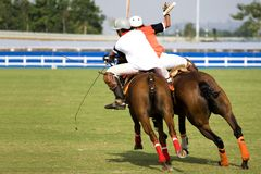 Polo Royalty Free Stock Photography