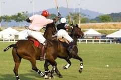 Polo Royalty Free Stock Photo