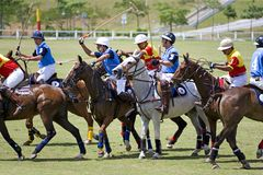 Polo Stock Photography