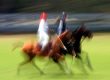 Polo Royalty Free Stock Photos