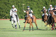 Polo Action at Saratoga Polo. Opening day Match at Saratoga for the 2009 season between Sugar Maple (white/green) and Buckleigh (green Stock Photo