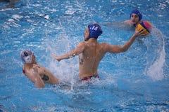 Polo aquático - jogando a bola Fotos de Stock Royalty Free