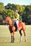 Polo auf dem Mittelweg Stockfoto