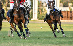 Polo Ball is floating Royalty Free Stock Photography