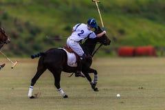 Polo Ball Player Pony Backhand Fotografia Stock