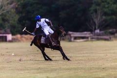 Polo Ball Player Pony Backhand Hit Stock Image