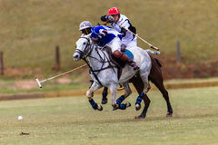 Polo Ball Players Ponies Galloping-Bal stock foto