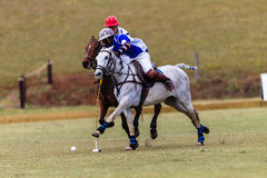 Polo Ball Players Ponies Hitting Ball Stock Photo