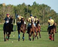 Polo bei schwarzem Diamond Polo Club Stockfoto