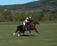 Polo bei schwarzem Diamond Polo Club Stockfotografie