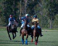 Polo bei schwarzem Diamond Polo Club Lizenzfreies Stockfoto