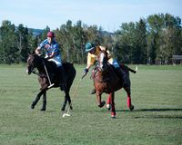 Polo bei schwarzem Diamond Polo Club Lizenzfreie Stockbilder