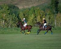Polo bei schwarzem Diamond Polo Club Stockbilder