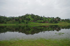Polo boslandschap Royalty-vrije Stock Afbeelding
