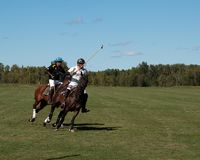 Polo chez Diamond Polo Club noir Image stock
